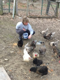 48 - Mary talks to chickens